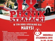 piknik strazacki borki